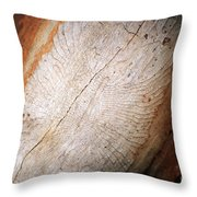 Sign In The Wood I Throw Pillow