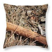 Sign In The Wood II Throw Pillow