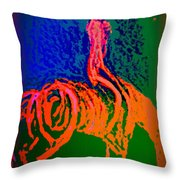Go Carefully When You See The Sign Of A Rider  Throw Pillow