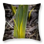 Sign Of Spring 2 Throw Pillow