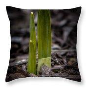 Sign Of Spring Throw Pillow
