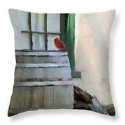 Signs Of Spring Throw Pillow by Ron Jones