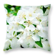 Signs That Spring Has Sprung Throw Pillow