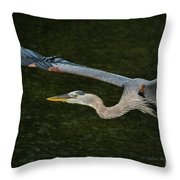 Silence In The Wings Throw Pillow