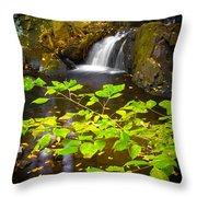 Silent Brook Throw Pillow