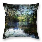 Silent Lake Ludington Michigan Throw Pillow