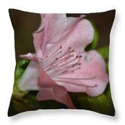 Silent Pink Photo B Throw Pillow