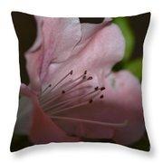 Silent Pink Photo D Throw Pillow