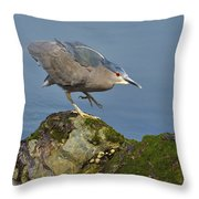 Silent Steps Throw Pillow