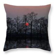Silent Sun Throw Pillow