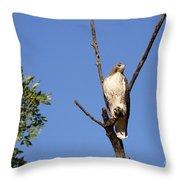 Silent Watch Throw Pillow