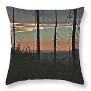 Silhouette @ Yosemite Throw Pillow