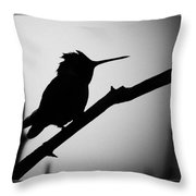 Silhouette Humming Bird Throw Pillow