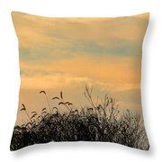 Silhouette Of Grass And Weeds Against The Color Of The Setting Sun Throw Pillow