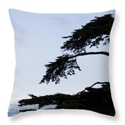 Silhouette Of Monterey Cypress Tree Throw Pillow