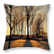 Silhouette Of Trees And Ice Throw Pillow