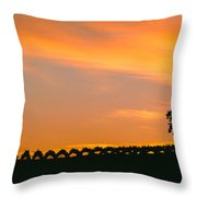 Silhouette Of Vineyard At Sunset, Paso Throw Pillow