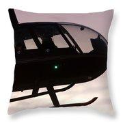 Silhouette Raven II Throw Pillow