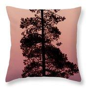 Silhouette Tree At Sunrise Throw Pillow