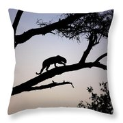 Silhouetted Leopard Throw Pillow