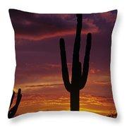 Silhouetted Saguaro Cactus Sunset  Arizona State Usa Throw Pillow