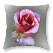 Silk And Satin Throw Pillow