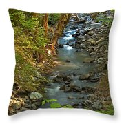 Silky Stream In Rain Forest Landscape Art Prints Throw Pillow