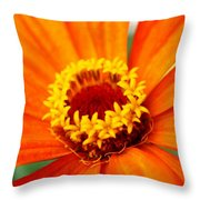Silky Petal Throw Pillow