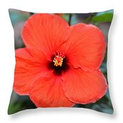 Silky Red Hibiscus Flower Throw Pillow
