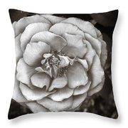 Silky Rose Throw Pillow