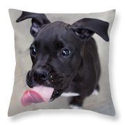 Silly Boxer Sticking Tongue Out Throw Pillow
