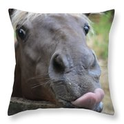 Silly Horse Throw Pillow