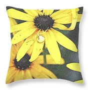 Silly Susans Spider Throw Pillow
