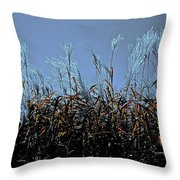 Silver And Gold  Throw Pillow