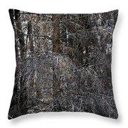 Silver Cedar Throw Pillow