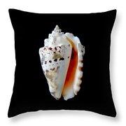 Silver Conch Seashell Throw Pillow