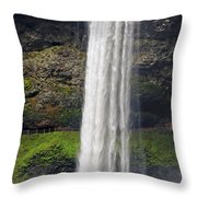 Silver Falls 2 Throw Pillow