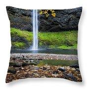 Silver Falls In Fall Throw Pillow