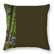 Silver Falls Oregon Throw Pillow