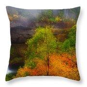 Silver Falls Pano Throw Pillow by Darren  White