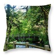 Silver Falls Stream Throw Pillow