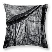 Silver Grey Throw Pillow