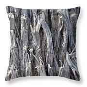 Silver Heavy Metal  Throw Pillow