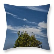 Silver Lake Dune With Tree Grove And Cirrus Clouds Throw Pillow