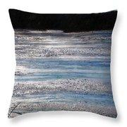 Silver Marsh Throw Pillow