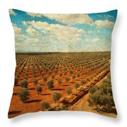 Silver Olive Trees In Andalusia. Spain Throw Pillow
