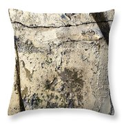 Silver Paint Texture Throw Pillow