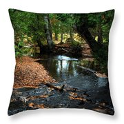 Silver River Channel In Autumn Throw Pillow