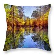 Silver River Colors Throw Pillow by Christine Till