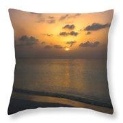 Silver Sea Throw Pillow